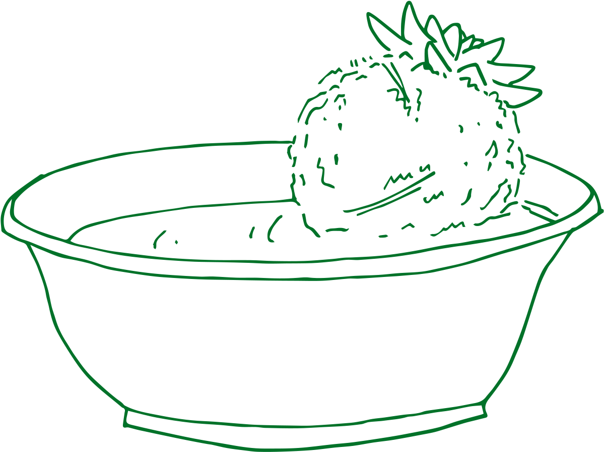 hand drawn image of a kokedama